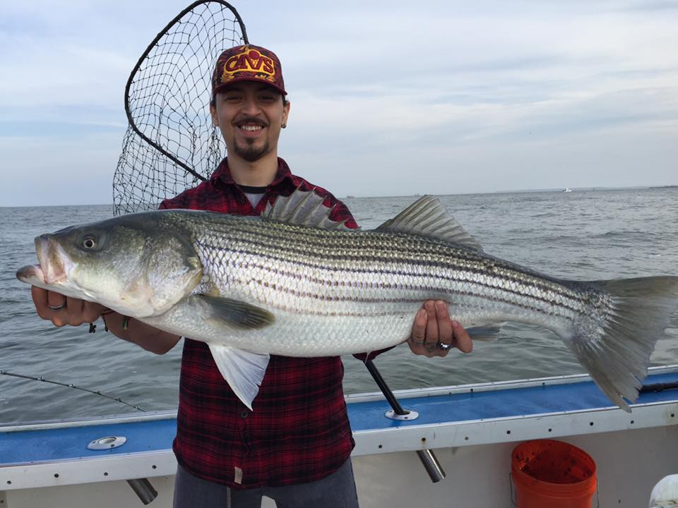 Rockfish charters sheepshead bay brooklyn ny fishing charter for Brooklyn fishing report